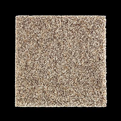 Nature S Luxury Ii By Mohawk Horizon Carpets In Dalton