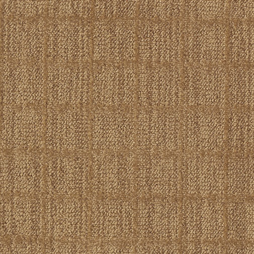 Buy Nature S Weave By Milliken Nylon Carpets In Dalton