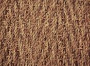 01 seagrass
