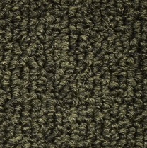 Outside Agenda By Shaw Indoor Outdoor Loop Carpet