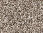 Shaw-Carpet-Queen-Palette-Barn Wood