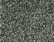 Shaw-Carpet-Queen-Palette-Lush