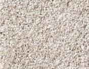 Shaw-Carpet-Queen-Palette-Parchment