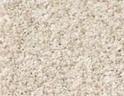 Shaw-Carpet-Queen-Palette-Pebble