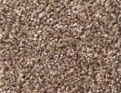 Shaw-Carpet-Queen-Palette-Pine Cone