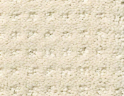 Shaw-Carpet- Queen- Perpetual- Movel- Ivory Paper