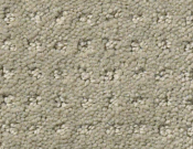 Shaw-Carpet- Queen- Perpetual- Movel- Lady in gray