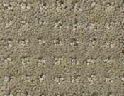 Shaw-Carpet- Queen- Perpetual- Movel- Mocha