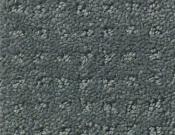 Shaw-Carpet- Queen- Perpetual- Movel- Night club
