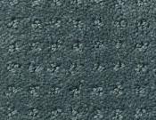 Shaw-Carpet- Queen- Perpetual- Movel- Oceanside