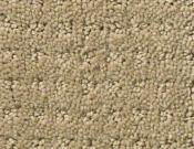 Shaw-Carpet- Queen- Perpetual- Movel- Safari