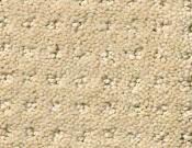 Shaw-Carpet- Queen- Perpetual- Movel- Shoreline