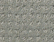 Shaw-Carpet- Queen- Perpetual- Movel- Slate