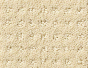 Shaw-Carpet- Queen- Perpetual- Movel- Treasure