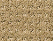 Shaw-Carpet- Queen- Perpetual- Movel- Warmth
