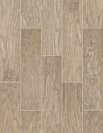 Buy Petrified Hickory By Shaw Ceramic Tile Hickory