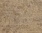 Fibreworks- Carpet- Portico- Waves of Grain (Tan)