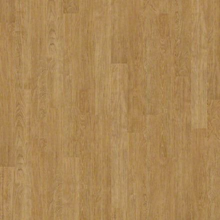 Buy rodeo drive by shaw durable for Camden flooring