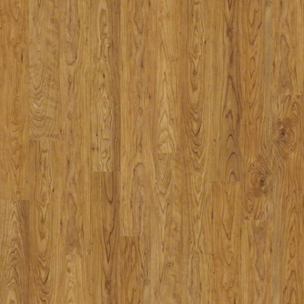 Salador By Shaw Laminate Smooth Carpets In Dalton
