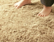 Plush Carpet