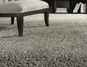 Shag Carpet