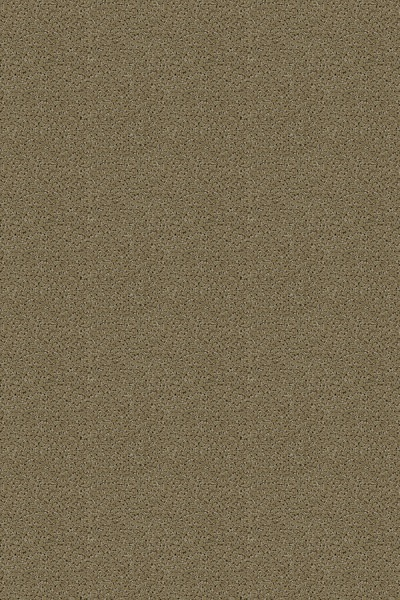 Buy Sterling By Lexmark Pattern Texture