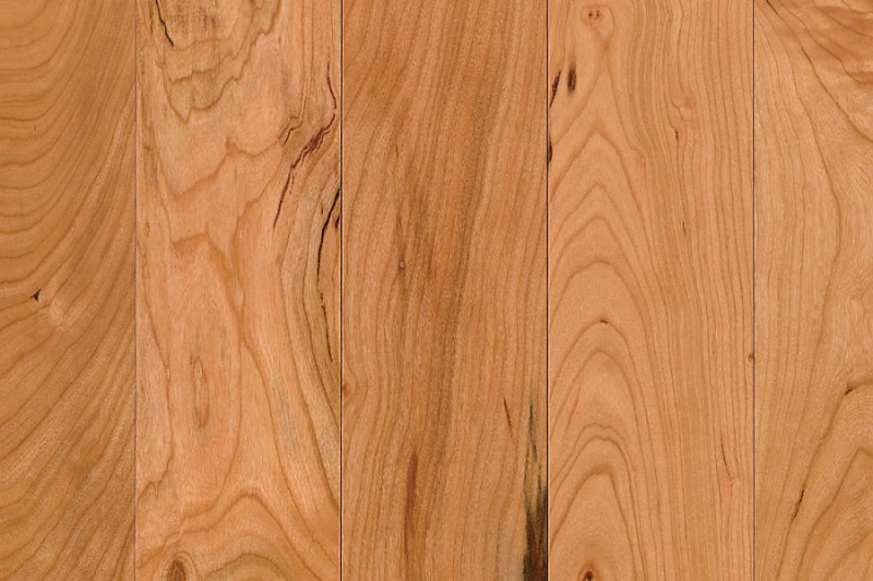 Tisdale By Mohawk Hardwood Solid Scotchguard Plank