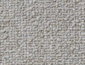 Shaw- Carpet- Philadelphia- Vocation- III- 26- Accredited