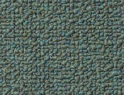 Shaw- Carpet- Philadelphia- Vocation- III- 26- Alternative