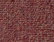 Shaw- Carpet- Philadelphia- Vocation- III- 26- Business park