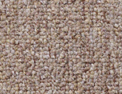 Shaw- Carpet- Philadelphia- Vocation- III- 26- Career Path