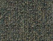 Shaw- Carpet- Philadelphia- Vocation- III- 26- Consultant
