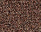 Shaw- Carpet- Philadelphia- Vocation- III- 26- Fast track