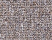 Shaw- Carpet- Philadelphia- Vocation- III- 26- Management
