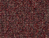 Shaw- Carpet- Philadelphia- Vocation- III- 26- Power house