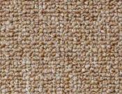Shaw- Carpet- Philadelphia- Vocation- III- 26- Professional