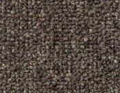 Shaw- Carpet- Philadelphia- Vocation- III- 26- Senior rep