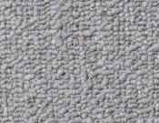 Shaw- Carpet- Philadelphia- Vocation- III- 28- Accredited
