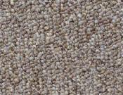 Shaw- Carpet- Philadelphia- Vocation- III- 28- Career Path