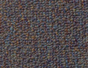 Shaw- Carpet- Philadelphia- Vocation- III- 28- Classified
