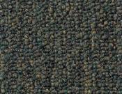 Shaw- Carpet- Philadelphia- Vocation- III- 28- Consultant