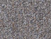 Shaw- Carpet- Philadelphia- Vocation- III- 28- Management