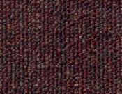 Shaw- Carpet- Philadelphia- Vocation- III- 28- Power house