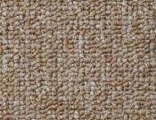 Shaw- Carpet- Philadelphia- Vocation- III- 28- Professional