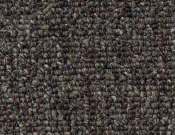 Shaw- Carpet- Philadelphia- Vocation- III- 28- Senior rep