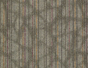 Shaw-Carpet-Philadelphia-Warp-It-Calico