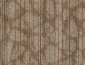 Shaw-Carpet-Philadelphia-Warp-It-Tweed