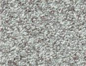 Shaw-Carpet-Wild-Extract-Fleece