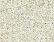 Shaw-Carpet-Wild-Extract-Moonscape
