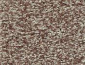 Shaw-Carpet-Wild-Extract-Pecan